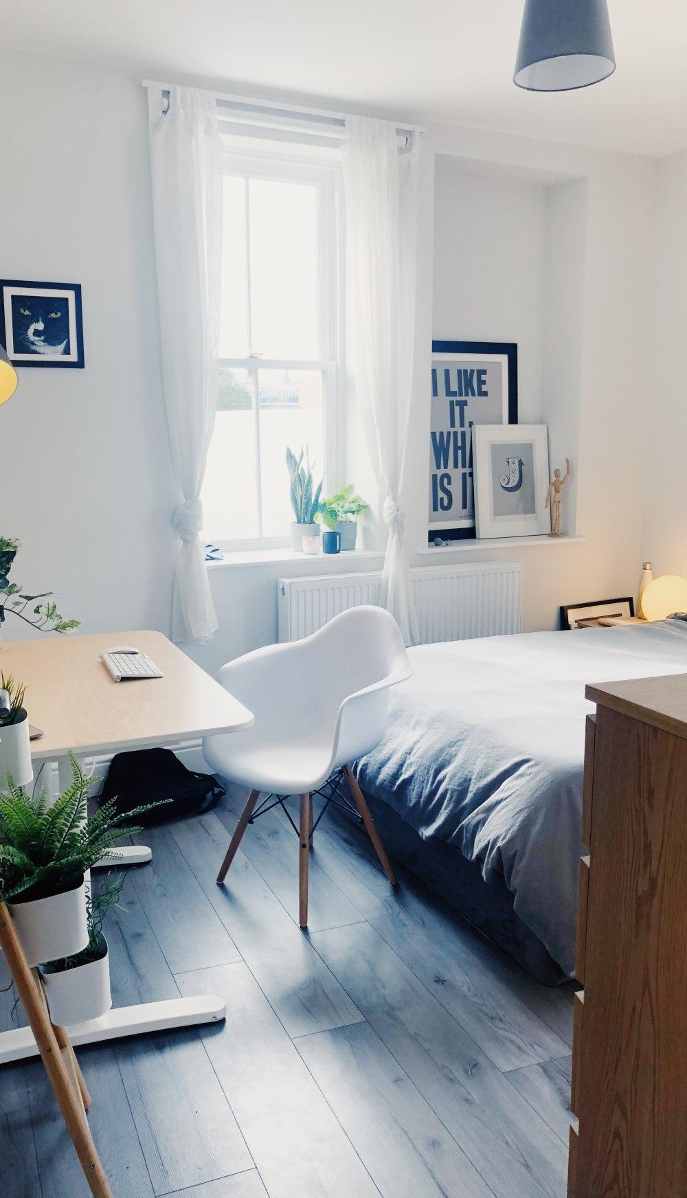 спальные папоротники, спальные папоротникКакие комнатные растения полезны для дома?и, спальные папоротники